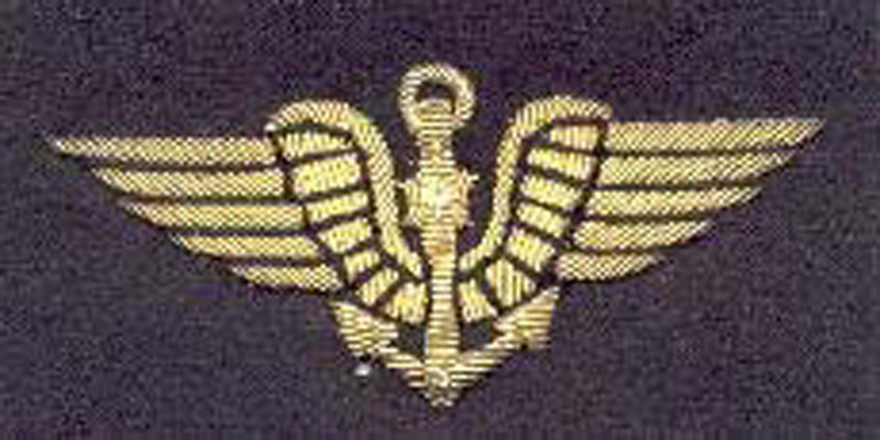 Insigne de l'aviation maritime le pingouin. (Collection Fernande.B)