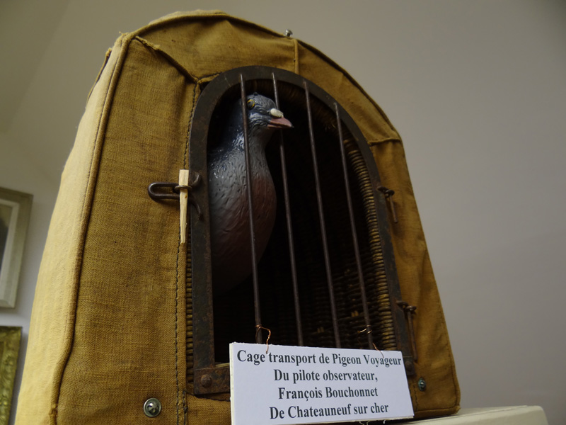 Cage de transport de pigeon voyageur (Collection-A.R)